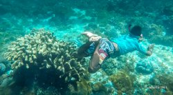 Snorkelling in Pink Beach