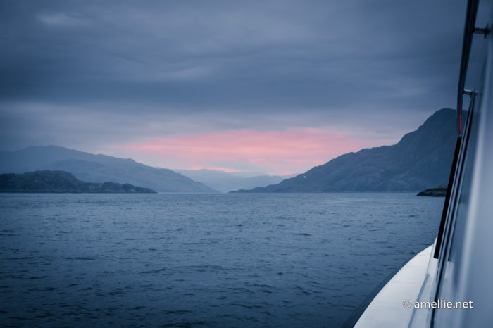 Wildlife cruise from Mallaig